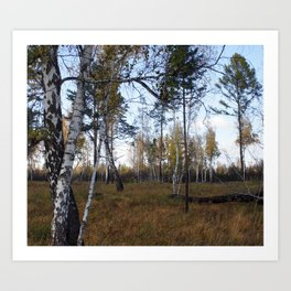 russia1 Art Print