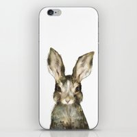 woodland iPhone & iPod Skins featuring Little Rabbit by Amy Hamilton