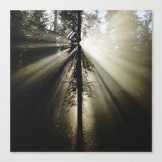 Umpqua Rays Canvas Print