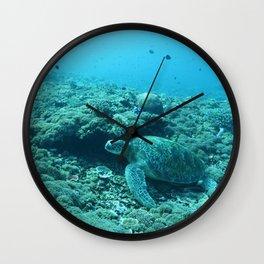 Resting green turtle Wall Clock