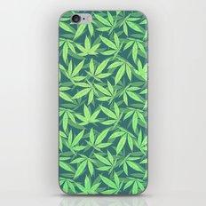 Cannabis / Hemp / 420 / Marijuana  - Pattern iPhone & iPod Skin