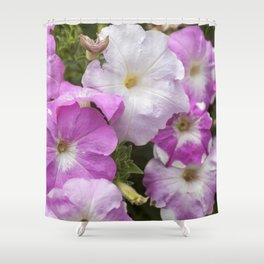 Petunia Arrangement Shower Curtain