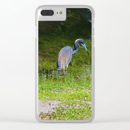 Disappearing in Plain Sight Clear iPhone Case