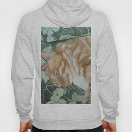 Catnap Sleeping Cat Painting Hoody