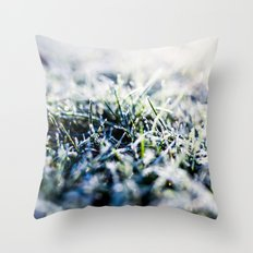 Frosty Morning 1 Throw Pillow