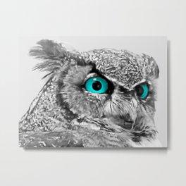 Black and White Great Horned Owl w Aqua Eyes A174 Metal Print