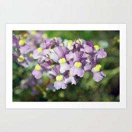 Pretty Petite Purple Blooms Art Print
