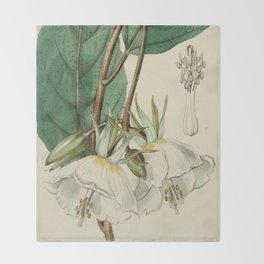 Edwards' Botanical Register Throw Blanket