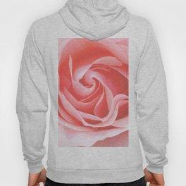 Velvet pink rose - Roses Flowers Flower Hoody