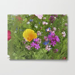 wildflowers meadow II Metal Print