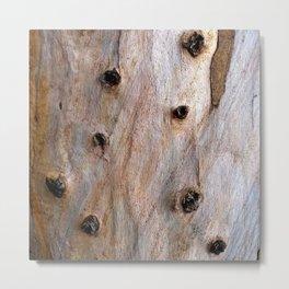 Eucalyptus Tree Bark and Wood Texture 14 Metal Print