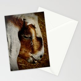 Brown and White Goat Stationery Cards