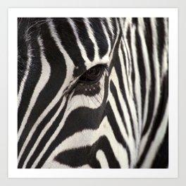 africa animals art prints society6