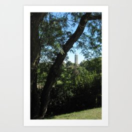 KU Campanile Through The Trees Art Print