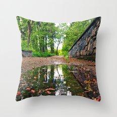 Northwest beauty Throw Pillow