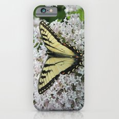 Butterfly Delight iPhone 6s Slim Case