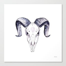 Ram sheep | skull Canvas Print