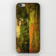 A Nice Walk iPhone & iPod Skin