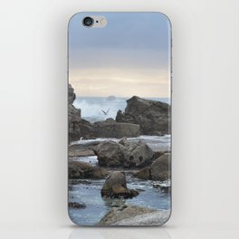 All Natural iPhone Skin