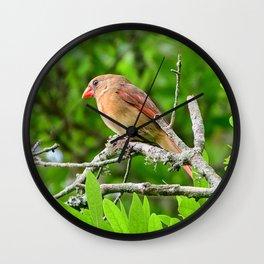 Female Cardinal Wall Clock