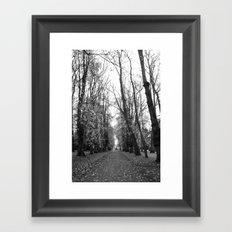 Leafy Walk Framed Art Print
