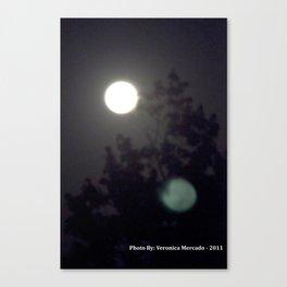 Moonlight Through the Darkness Canvas Print