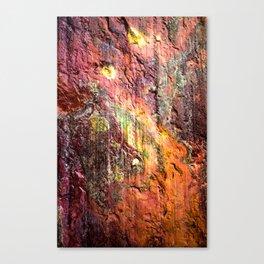 Colorful Nature : Texture Warm Tones Canvas Print