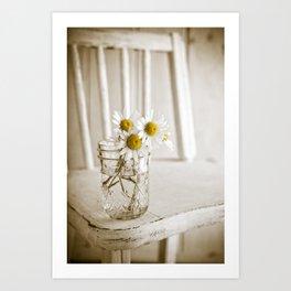 Simple White Daisy Flowers Art Print