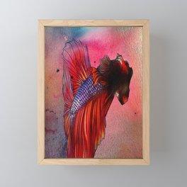 Betta Collection Framed Mini Art Print