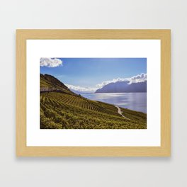 Lavaux Framed Art Print