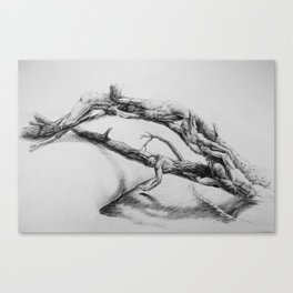Fallen Tree people figure bridge reaching for water hand touching pencil drawing Canvas Print
