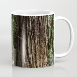 Redwood Road Trip - California Coffee Mug