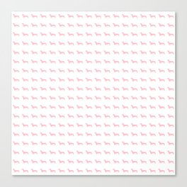 Pink Dachshunds Canvas Print