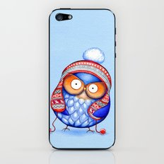 Winter Hat Owl iPhone & iPod Skin