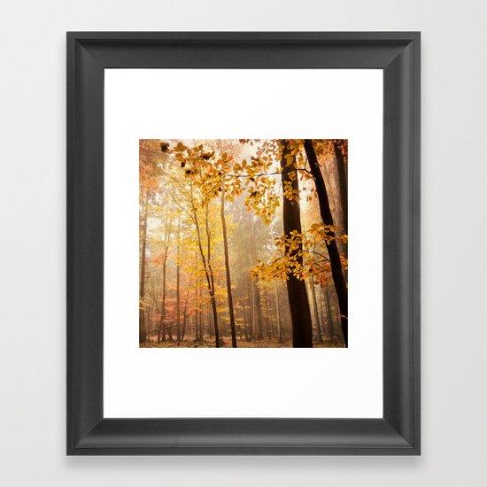 through the woods square Framed Art Print