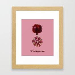 Pomegran - Fruit Illustration Framed Art Print