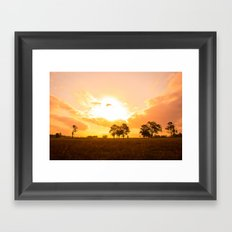 Golden sunset. Framed Art Print