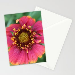Natures Nectar Stationery Cards