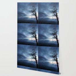 First Light Wallpaper