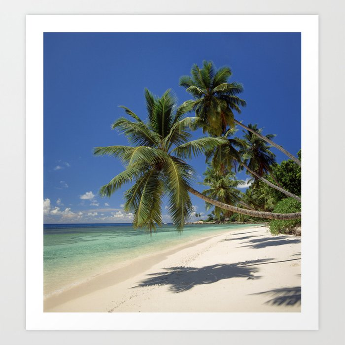 Palm beach, the Seychelles, La Digue island, Kunstdrucke