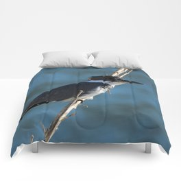 Male Belted Kingfisher Comforters