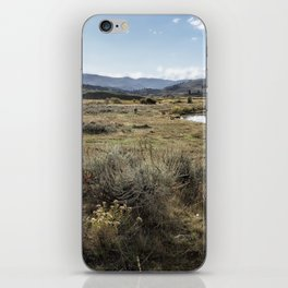 Waiting for Wolves in Lamar Valley - Yellowstone iPhone Skin
