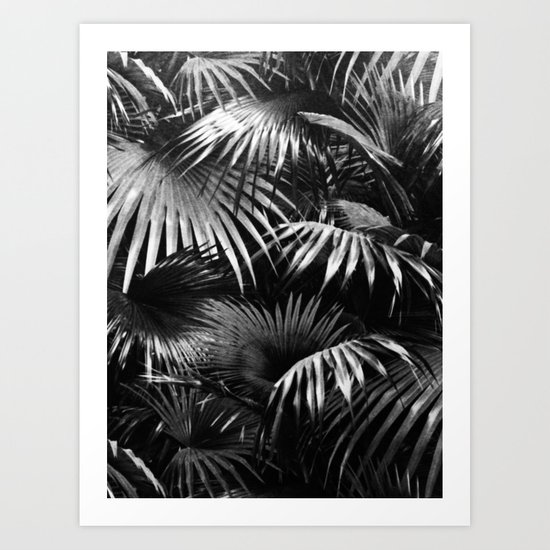 Tropical Botanic Jungle Garden Palm Leaf Black And White by beautifulhomes