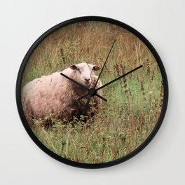 Woolly Sheep Wall Clock