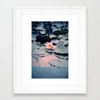 lily Framed Art Prints featuring lily by Claudia Drossert