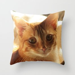 Lovely Eyes Throw Pillow