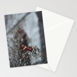 A Rose by Any Other Name Stationery Cards