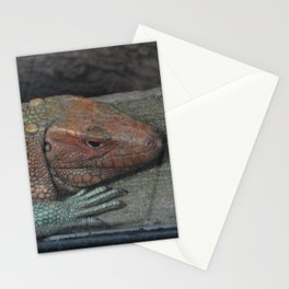 Northern Caiman Lizard Stationery Cards