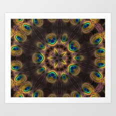 The Eye of the Peacock Art Print