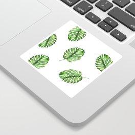 Monstera green leaves Sticker